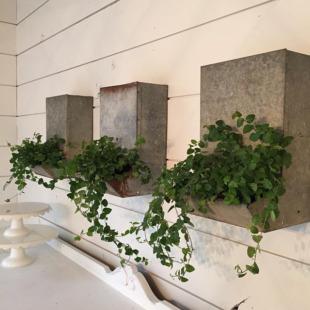 fixer upper style galavanized planters