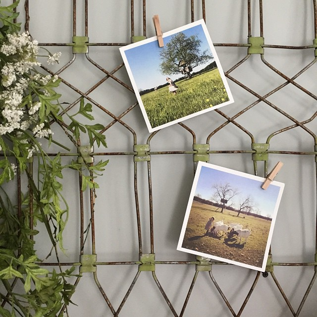fixer upper style metal photo displays
