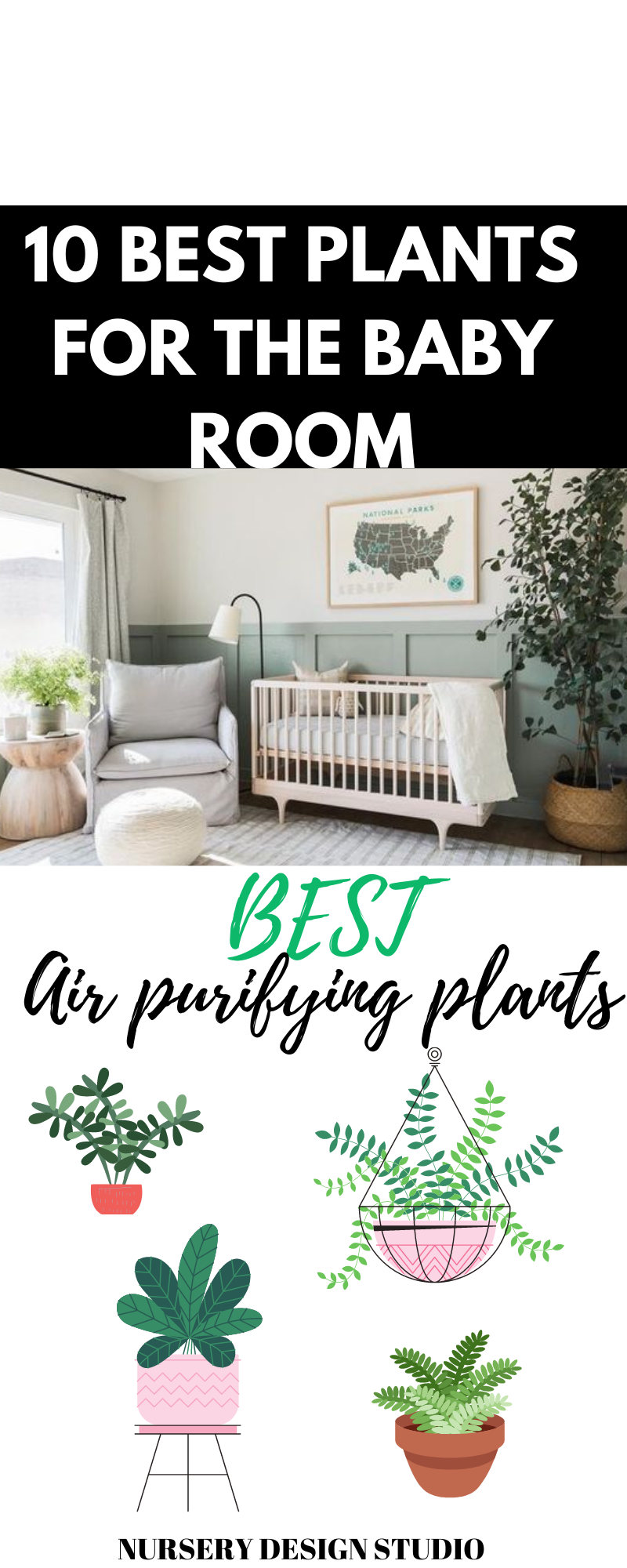 best-plants-for-baby-room
